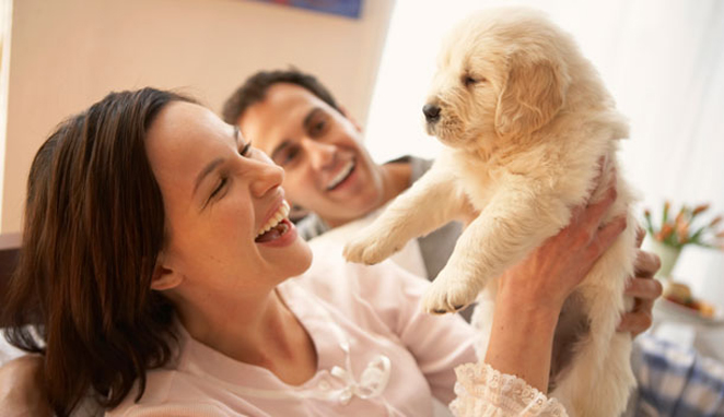 THE FIRST 5 THINGS THAT NEW PUPPY PARENTS SHOULD KNOW